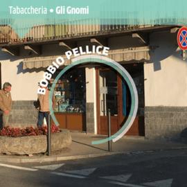 BobbioPellice_GliGnomi